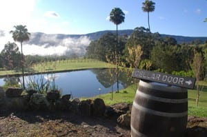 Seven wineries, all within 45 minutes. Check them out and enjoy.